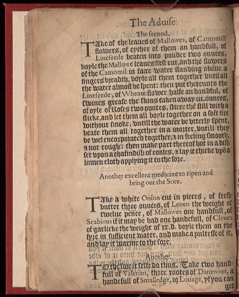Page 1 of the Plague Book
